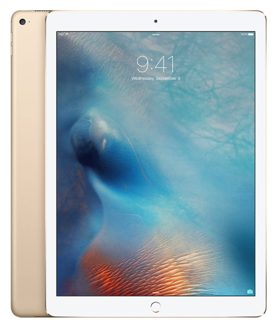 iPad Pro 128Gb Wi-Fi + Cellular Gold ML2K2RU/A